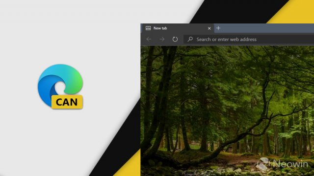 Microsoft выпустила Microsoft Edge Canary Build 81.0.394.0